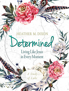 Determined - Women's Bible Study Participant Workbook
